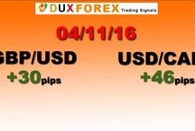 Daily Forex Profits Performance 04/11/16