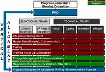 IT Program Management