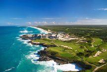Dominican Republic / Dzisiaj Dominikana zajmuje czołowe miejsce na liście ulubionych karaibskich miejsc wakacyjnych. Dużą rolę w popularności wyspy mają sami Dominikańczycy, hiszpańskojęzyczni Kreole – potomkowie dawnych kolonizatorów i niewolników, którzy są otwarci, przyjaźni i spontaniczni, co wyraża się w pełnym ekspresji tańcu merengue.  http://www.itaka.pl/nasze-kierunki/dominikana.html
