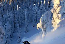 Paisajes Nieve y Esquí / Paisajes relacionados con la nieve y con la práctica del esquí.