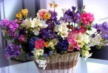 bouqets & flowers