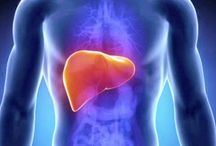 Endometriosis/liver