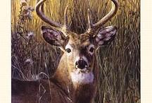Hunting <3