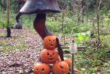 Halloween!! / Scary goings on at Rays Farm