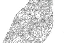 Coloring for adults 2