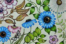 desenhos coloridos