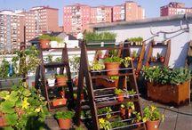 Huertas- Jardines