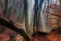 World Landscapes / High-Res photos of the best landscapes in the world