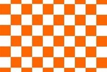 Go Vols / by Phil McCrary
