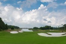 Flamingo Golf Course / A 9-standard-hole and 18-hole miniature golf course is covered by green trees with spacious lake, pine forest, and grass. The Golf Club is an elegant architecture for players to explore and practice