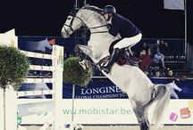 Jumping & Eventing