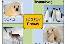 πολικά ζώα