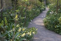 Garden Landscapes / Beautiful garden landscapes, dreamy gardens, secret gardens and inspiring outdoor living areas that make it hard to come inside...gardens should be full of color, textures and varying heights, perennials, shrubs, trees, lots of green or color year round...creative gardens are a form of art!