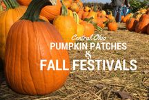 Fall Fun! / Fall activities and things to do in Columbus, Ohio.