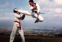 Taekwondo, Yo!