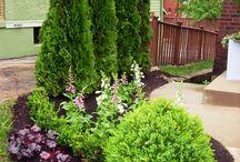 κηποι