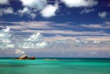 Bermuda / by Kathrynwitte
