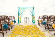 heli svatba