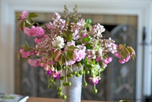 Floral arrangements / Flowers and floral arrangement tips. Inspirational images of blooms for your home, parties, weddings.