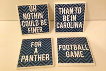 Panthers Crafts