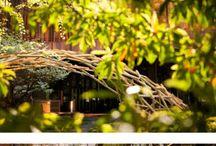 Параметрическая архитектура дерево