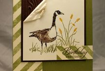Card Ideas - SU Wetlands / by Lisa Gundrum