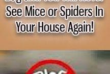 byebye pests