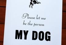 In Dog I Trust