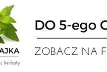 Co ciekawego w ekorytm.pl