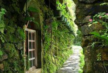 Doors, Windows,Gates
