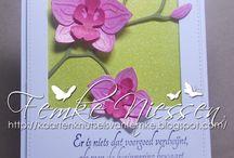 Orchideeen kaart