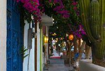 Mexico - baja California -