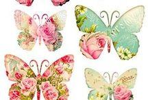 butterflys