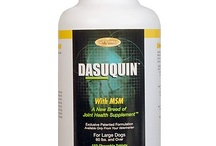 Dasuquin for dogs - Joint health supplement / Dasuquin® for dogs - #1 joint health brand contains Cosequin's FCHG49® glucosamine hydrochloride and TRH122®. It is available in soft chews and tablets.