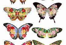 vlinders map