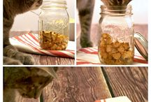 Homemade Cat Treats / by 🐾 Sheila Block 🐾