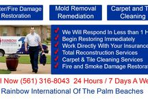 Mold Removal Specialist Hobe Sound / home mold removal and remediation