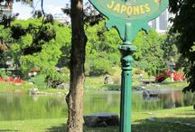 Japanese Gardens / A sampling of inspiration for designing Japanese Gardens