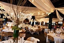 Wedding Stuff / by Shelby Reck