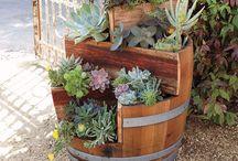 jardin / Tipos de jardines y plantas