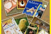 teaching READING / by BreAnna Briggs
