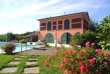Holiday Apartments with Swimmingpool / A large selection of holiday rental apartments in Lucca, Tuscany, with private swimmingpool.