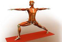 Yoga - Rotation