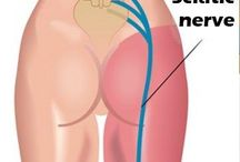 Bolest chrbtice