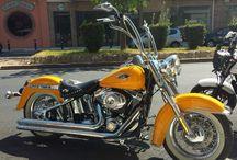 My Harley....