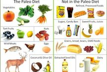 Paleo Diet / by Ames Well