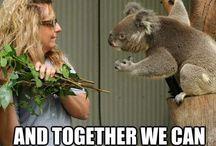 Ha Ha Cute....