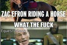 funny horse stuff