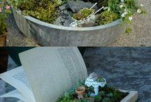 Plants and flowers / Termeszet, növények