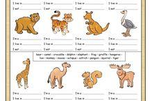 vocabulary for kids